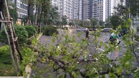 Thành phố Hồ Chí Minh có mưa to
