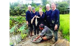 Ông Bé Tư bắt cá đồng bằng nom cùng du khách phía sau ruộng trong sen kết hợp nuôi cá