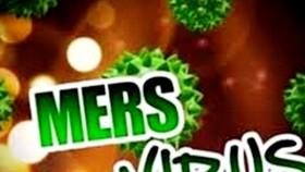 Ráo riết ngăn chặn Hội chứng nguy hiểm MERS- CoV tái phát