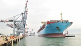 Tàu siêu trọng vào nhận hàng tại khu cảng Cái Mép - Thị Vải     Ảnh: CAO THĂNG
