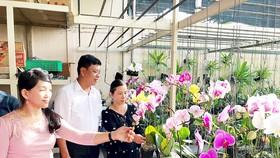 Đại diện HTX Hoa lan Huyền Thoại tham quan giới thiệu sản phẩm hoa lan cắt cành ở TP Cần Thơ