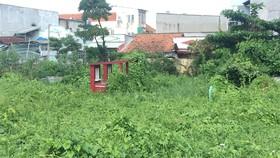 Khu nghĩa trang gia đình nằm trong khu dân cư vừa mất  mỹ quan, lại dễ bị lấn chiếm