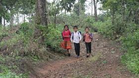 Học sinh làng H'Mông trên đường đến trường.  Ảnh: ĐÔNG NGUYÊN