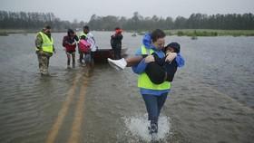 Ít nhất 19 người thiệt mạng vì bão ở Mỹ và Philippines