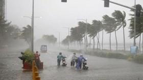 Bão Yutu thành bão số 7