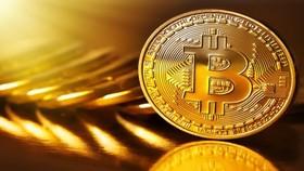 Giá trị đồng Bitcoin lao dốc