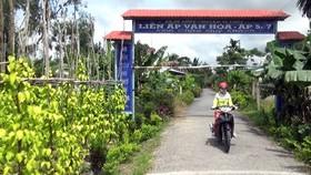Đường nông thôn dẫn vào Làng Trầu Vị Thủy. Ảnh: CAO PHONG