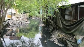 Rạch Bàu Trâu bị ô nhiễm nặng