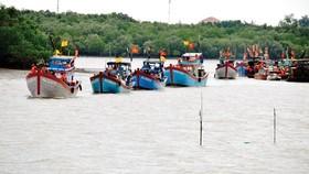 Khai thác thủy hải sản gắn liền với bảo tồn biển