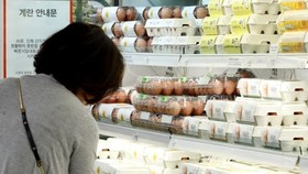 Gov't moves to import Danish, Thai eggs amid supply shortage