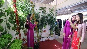 VIDEO: Visitors enjoy high-tech agriculture fair in Dalat