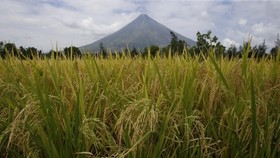 Philippines raises volcano alert level