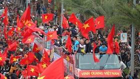 Football brings Vietnam, RoK closer: Korean newspaper