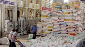 Stack of rice pallets at VINAFOOD's factory in HCM CIty. — VNA/VNS Photo Đình Huệ