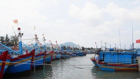 The province Quang Ninh to Binh Dinh should call on offshore vessels moving out of the dangerous zone Photo: SGGP