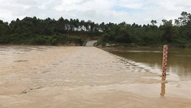 many fectares of rice is flooded by heavy rains in Nghe An province