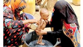 Giới công nghệ ngăn ngừa nạn đói toàn cầu