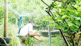 Công nghệ tưới tự động kết nối Internet của nông dân Thái Lan