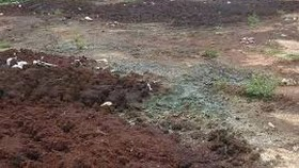 Khoanh vùng mức độ nguy hại môi trường tại xã Phong Phú, huyện Bình Chánh
