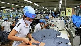 Năng suất lao động dần cải thiện