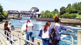Độc đáo con kênh đào