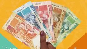 Những tờ tiền giấy phiên bản hạn chế được phát hành lần này. Ảnh: The  Straits Times