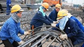 Năng suất lao động ngành nông nghiệp thấp nhất nền kinh tế