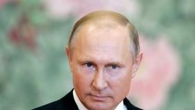 Tổng thống Nga Vladimir Putin. (Nguồn: Getty Images)