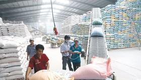 Loay hoay xây dựng thương hiệu gạo Việt