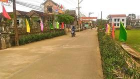 Khu vực nông thôn có nhiều thay đổi thực chất sau 10 năm thực hiện Nghị quyết 26. (Ảnh minh họa: Vietnamnet)