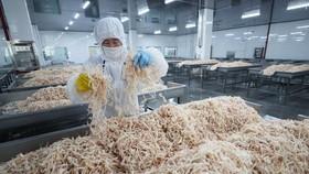 Chế biến hải sản xuất khẩu tại nhà máy ở Liên Vân Cảng, tỉnh Giang Tô, Trung Quốc ngày 5/7. (Nguồn: AFP/TTXVN)