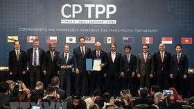 Bộ trưởng Công thương Trần Tuấn Anh (phải) cùng đại diện các nước tham gia lễ ký Hiệp định CP-TPP ở Santiago ngày 8/3. (Ảnh: THX/TTXVN).