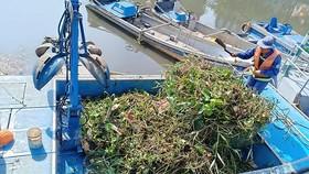Nước lên, những khóm lục bình dài hàng chục mét dạt vào kênh Nhiêu Lộc - Thị Nghè khiến công nhân cật lực làm việc cả buổi mới xử lý được. Ảnh: THU HƯỜNG