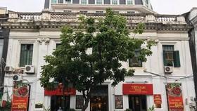 Hàng loạt sai phạm vụ bán đấu giá tại Agrexport Hà Nội