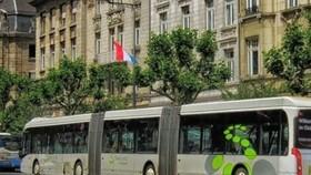 盧森堡成首個公共交通免費國家