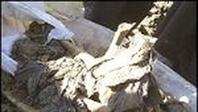 Mass grave unearthed in Iraq city