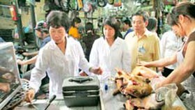 Hanoi dog meat restaurants come under scrutiny after cholera outbreak