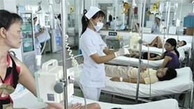 Three die of dengue fever