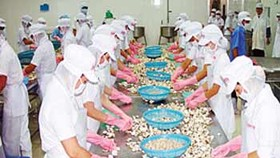 Seminar mulls solutions to boost Vietnam fisheries development