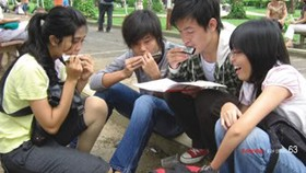 Harmonica clubs attract people in HCMC