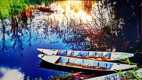 Painting exhibition by Da Lat doctor