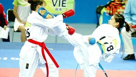 Vn wins karate championship