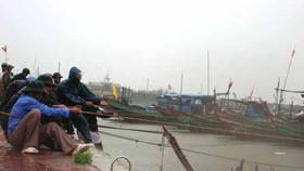 Typhoon weakens upon landing on coast