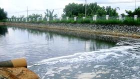 Sonadezi Company penalized for polluting environment