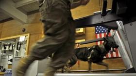 Joysticks transform US warfare in Afghanistan