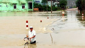 Floodwaters receding in Quang Ngai, Binh Dinh Provinces