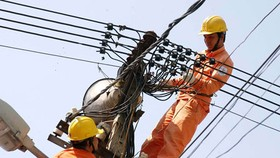 EVN not to increase electricity prices
