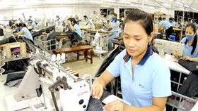 Decline in garment exports from Vietnam