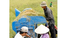 Gov't to purchase, stockpile rice from farmers