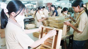 Gov't warns wood furniture exporters of anti-dumping lawsuits